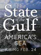 State of the Gulf Spotlight