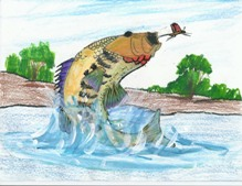 State Fish Art Contest winner