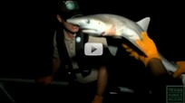Gulf Game Wardens on patrol video