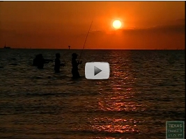 Night fishing video