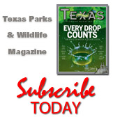 Magazine link to special offers