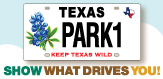 New Bluebonnet License Plate spotlight