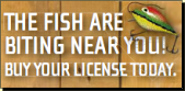 Buy a Fishing License Spotlight