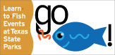 Go Fish spotlight